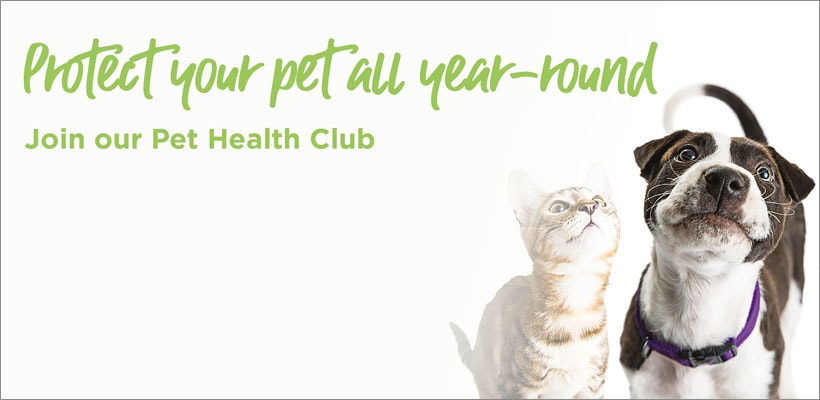 Pet Health Club Registration Form