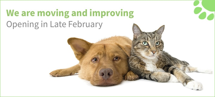 Donnachie & Townley Veterinary Centre in Rugeley & Stafford in Staffordshire