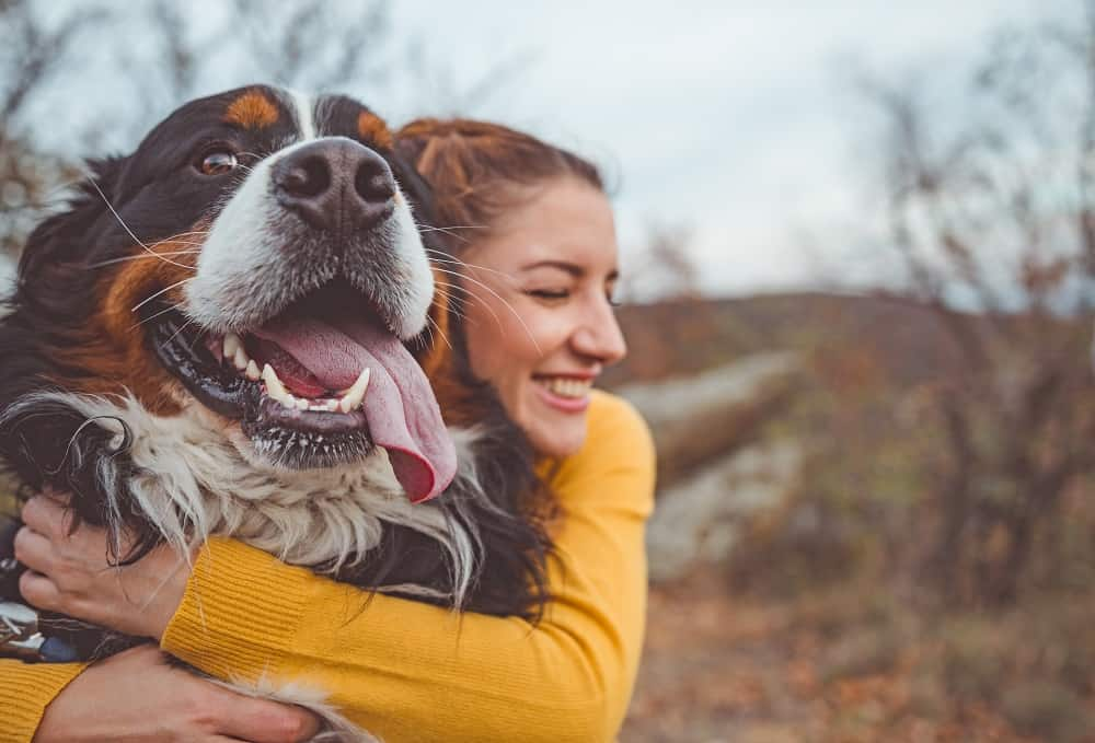 Happiness day-dog and owner